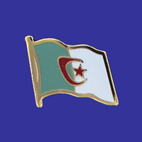 ALGERIA FLAG PIN