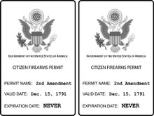 "2 PACK - ""CITIZEN GUN PERMIT"" PRO 2ND AMENDMENT 4x6 Inch Political Bumper Stickers"