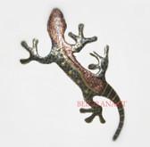 Lizard-070