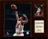 "NBA 12""x15"" Joakim Noah Chicago Bulls Player Plaque"
