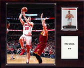 "NBA 12""x15"" Pau Gasol Chicago Bulls Player Plaque"