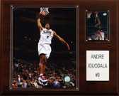 "NBA 12""x15"" Andre Iguodala Philadelphia 76ers Player Plaque"