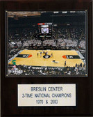 "NCAA Basketball 12""x15"" Breslin Center Arena Plaque"