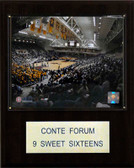 "NCAA Basketball 12""x15"" Conte Forum Arena Plaque"