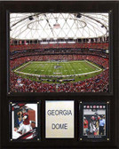 "NFL 12""x15"" Georgia Dome Stadium Plaque"