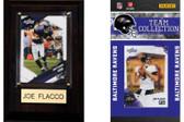 NFL Baltimore Ravens Fan Pack
