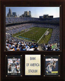 "NFL 12""x15"" Bank of America Stadium Plaque"
