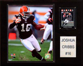 "NFL 12""x15"" Joshua Cribbs Cleveland Browns Player Plaque"
