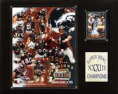 "NFL 12""x15"" Denver Broncos Super Bowl XXXIII Champions Plaque"