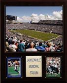 """NFL 12""""x15"""" Jacksonville Municipal Stadium Stadium Plaque"""