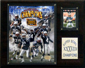 "NFL 12""x15"" New England Patriots Super Bowl XXXVIII Champions Plaque"