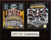 "16""x20"" Pittsburgh 2009 City of Champions Plaque"