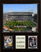 "NFL 12""x15"" Oakland-Alameda County Coliseum Stadium Plaque"