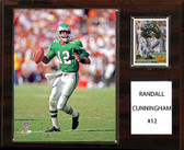 "NFL 12""x15"" Randall Cunningham Philadelphia Eagles Player Plaque"