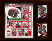 "NFL 12""x15"" Tampa Bay Buccaneers 2010 Team Plaque"