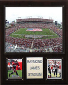 "NFL 12""x15"" Raymond James Stadium Stadium Plaque"