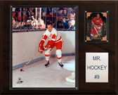 "NHL 12""x15"" Gordie Howe Detroit Red Wings Player Plaque"