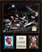 "NHL 12""x15"" Joe Louis Arena Arena Plaque"
