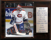 "NHL 12""x15"" Patrick Roy Montreal Canadiens Career Stat Plaque"