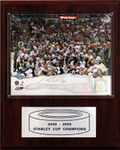 "NHL 12""x15"" Pittsburgh Penguins 2009 Stanley Cup Celebration Plaque"