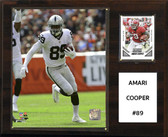 "NFL 12""x15"" Amari Cooper Oakland Raiders Player Plaque"