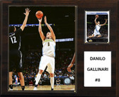 "NBA 12""x15""  Danilo Gallinari Denver Nuggets Player Plaque"
