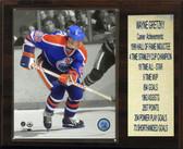 "NHL 12""x15"" Wayne Gretzky Edmonton Oilers Stat Plaque"