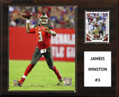 "NFL 12""x15"" Jamesis Winston Tampa Bay Bucs Player Plaque"