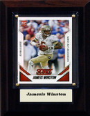 "NFL 4""x6"" Jamesis Winston Tampa Bay Bucs Player Plaque"