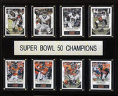 "NFL 12""x15"" New England Patriots Super Bowl 50 - 8-Card Plaque"