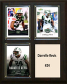 "NFL 8""x10"" Darrelle Revis New York Jets Three Card Plaque"
