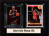 "NBA 6""X8"" Derrick Rose Chicago Bulls Two Card Plaque"