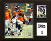 "NFL 12""x15"" C.J. Anderson Denver Broncos Player Plaque"