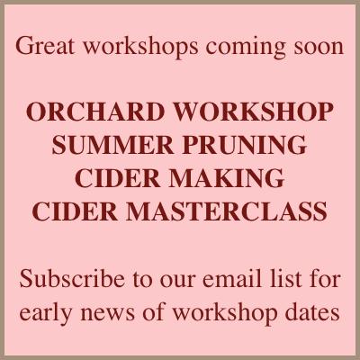 workshops-2015-coming.jpg