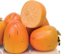 Vanilla Persimmon