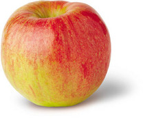 Twenty Ounce Apple (dwarf)