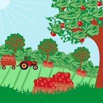 An Autumn Orchard Ramble