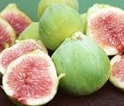 White Genoa Fig
