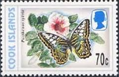 Image result for Parthenos sylvia stamp