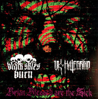 Black Skies Burn/UK Hategrind split