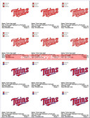 Minnesota Twins Minneapolis Baseball MLB Logo Sports Embroidery Designs
