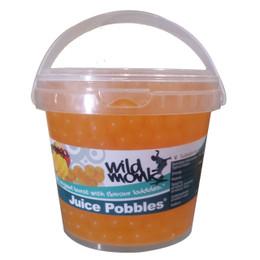 1.2kg Wild Monk MANGO Juice Pobbles