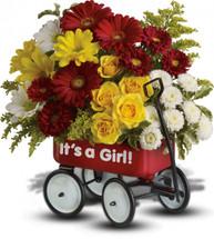 Baby's Wow Wagon - Girl