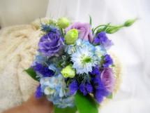 Lavender & Purple Hues
