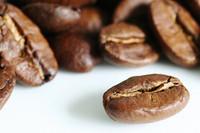 Mexican SHG Huatusco El Santo EP(GP) Fresh Roasted Gourmet Coffee Beans