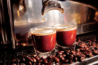 Signature Espresso Decaf Blend Gourmet Fresh Roasted Coffee Beans.