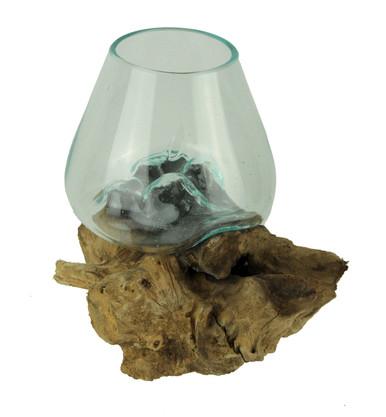 Glass On Teak Driftwood Decorative Vaseplant Terrarium Zeckos