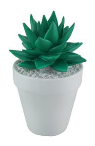 https://s3.amazonaws.com/zeckosimages/25-79897-light-green-aloe-vera-pot-1I.jpg