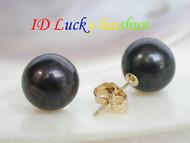 Genuine 10mm round black Freshwater pearl Earrings 14K Stud j6832