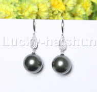 Dangle 16mm round black south sea shell pearls Earrings 925 silver hook j12131
